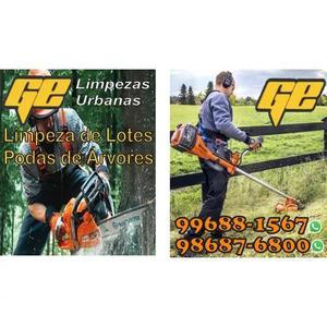 Limpeza De Lote E Poda De Árvore 319688_1567 3175418422