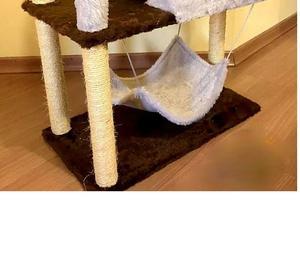 Brinquedo casa e arranhador 3 em 1 para Gato Urgente