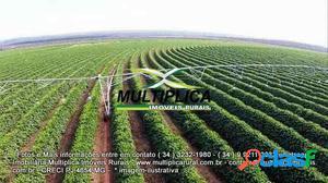 Fazenda em Café Patos de Minas MG 810 hectares 334