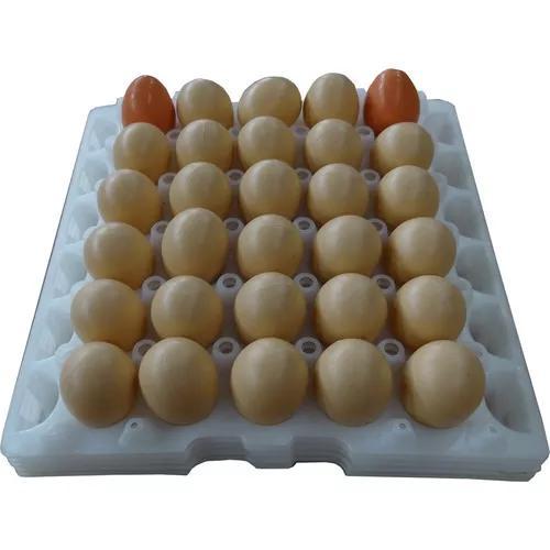 Kit Com 5 Bandejas Plasticas Para Ovos De Galinha
