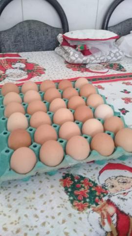 Ovos caipiras de excelentes qualidades