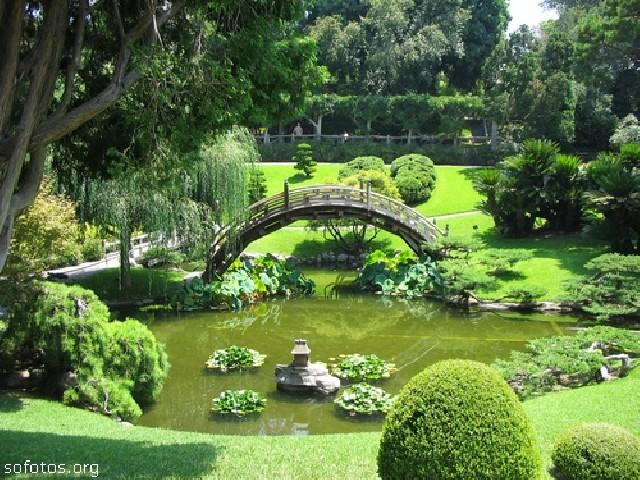 Liro paisagismo - jardinagem e paisagismo