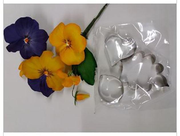 Cortadores em aço inox flores - 5 jogos - marca Anna