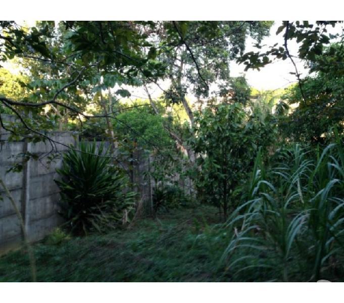 Vendo chácara na Bahia em Salvador no bairro Valéria