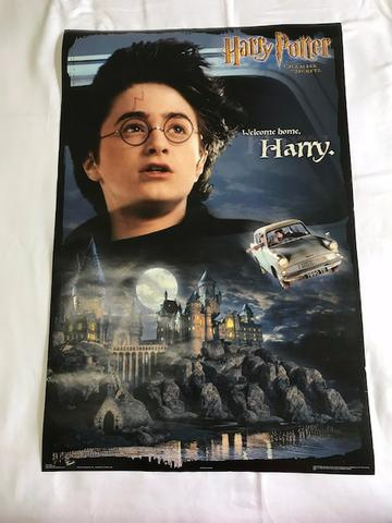 Combo de pôsters: Harry Potter & Senhor dos Anéis