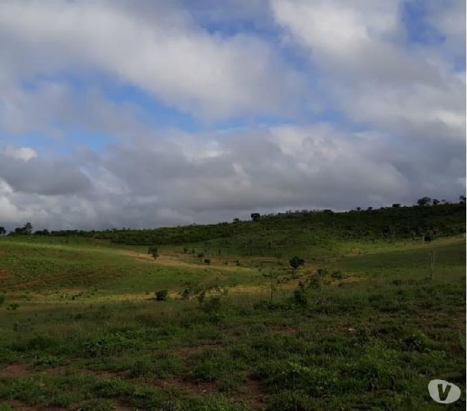 Linda fazenda em Ruy Barbosa