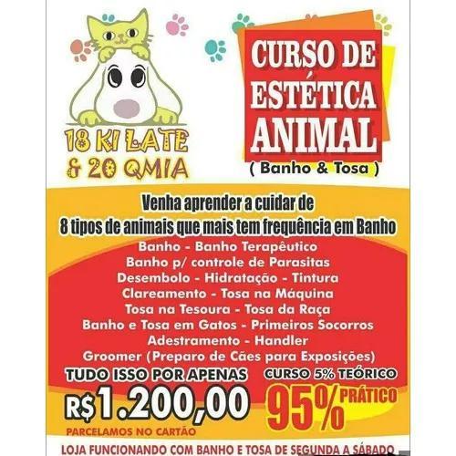 Curso De Estética Animal (banho E Tosa)