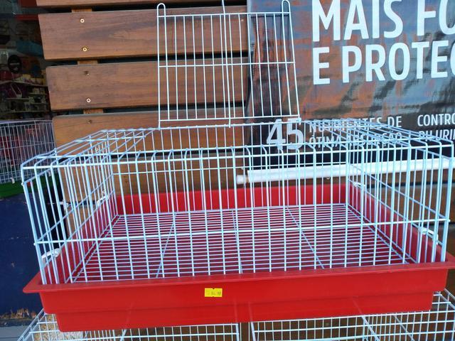 Gaiola P\ Porquinho da Índia, Mini coelho