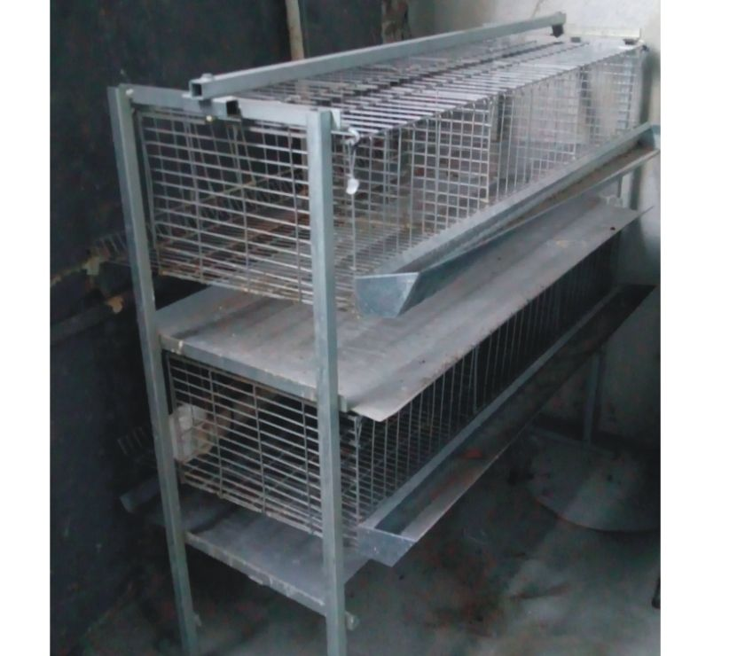 gaiola para corna gigante e material para elétrica