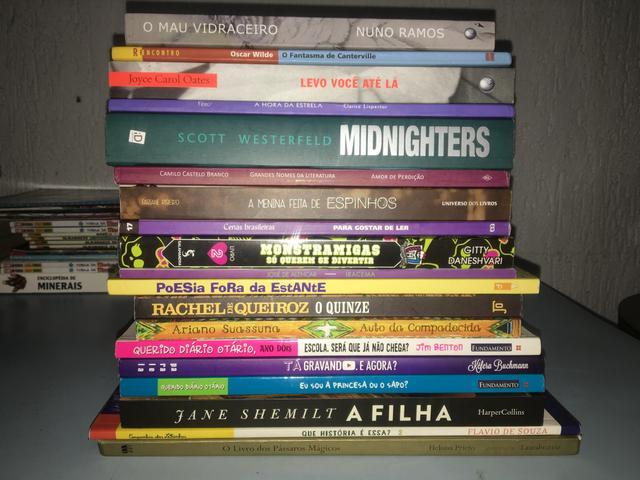 Lote de livros (2)