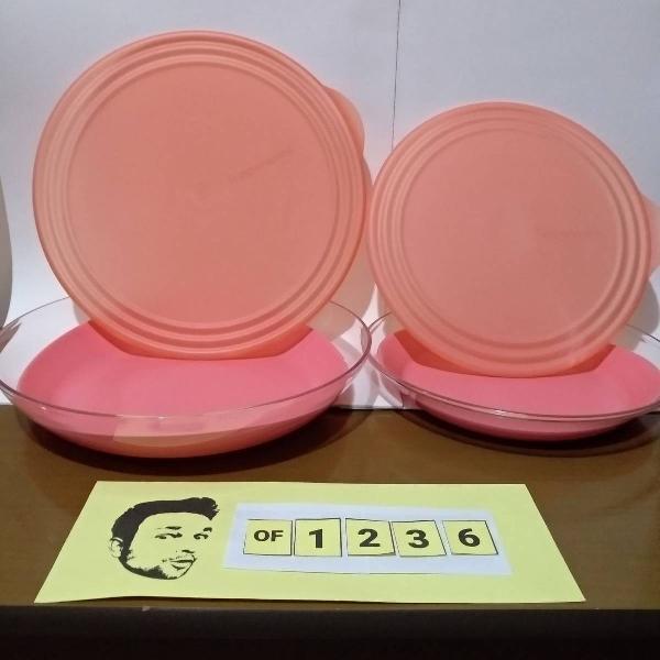 tupperware kit 2 tigelas 1,7/2,4 litros policarbonato coral