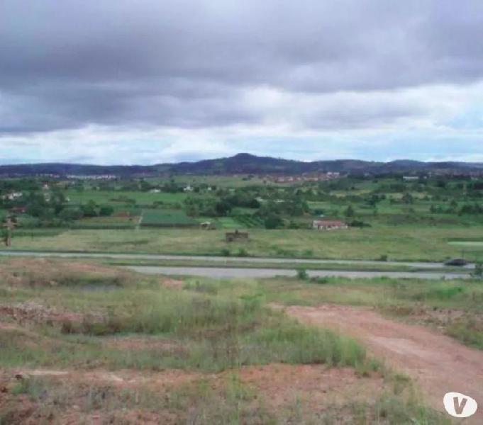 Terreno Ás Margens da BR-232 Km 54 em Natuba (2 Ha)