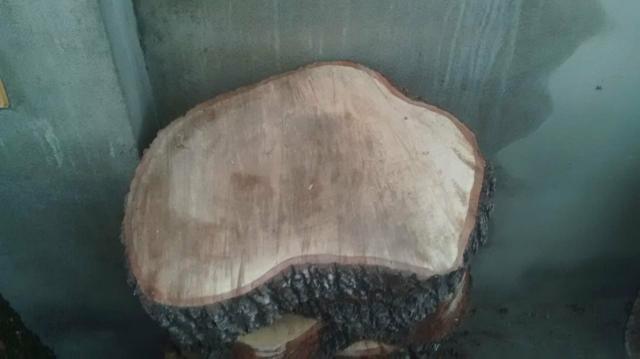 Bolachas e pranchas de madeira