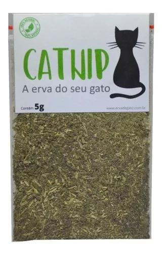 Catnip Erva De Gato Pura E Orgânica Com Frete Grátis - 5g