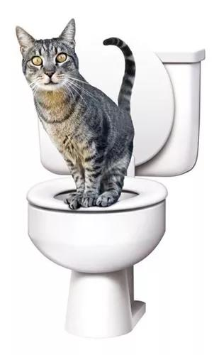 Citikitty Bandeja Higienica Treinamento Sanitario Para Gatos