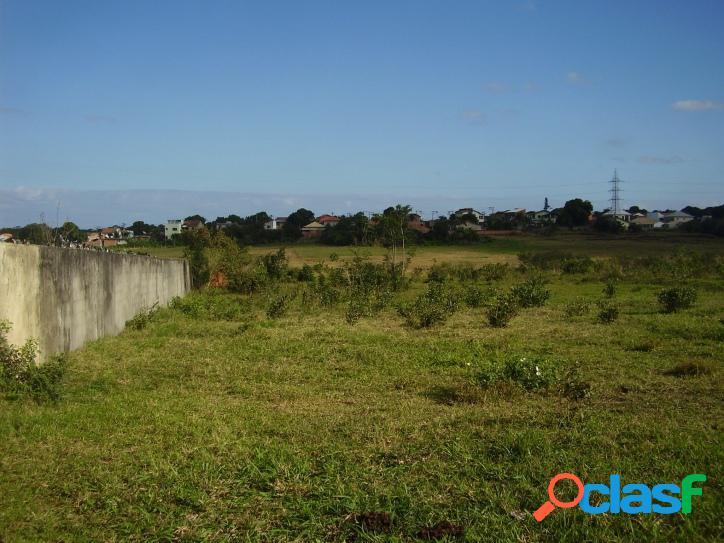 Lote/Terreno para venda possui 6000 metros quadrados em