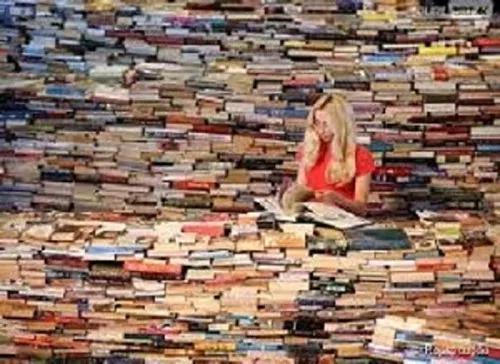 Lote Com 20 Livros Infanto Juvenis