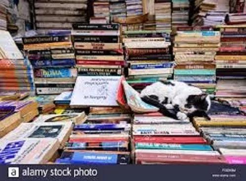 Lote Com 25 Livros Infanto Juvenis