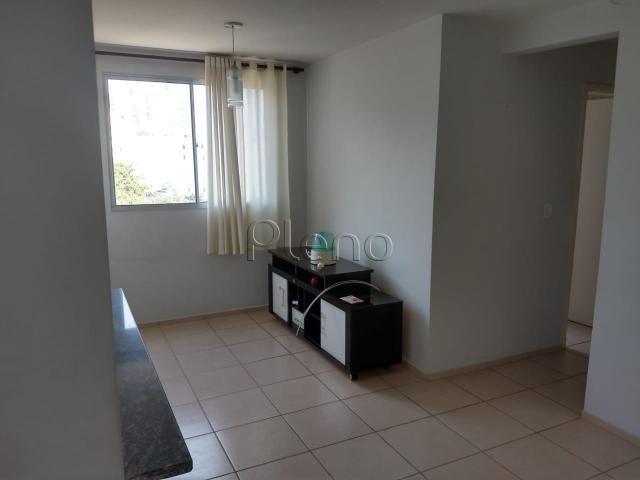 Apartamento para alugar com 3 dormitórios em Cambuí,