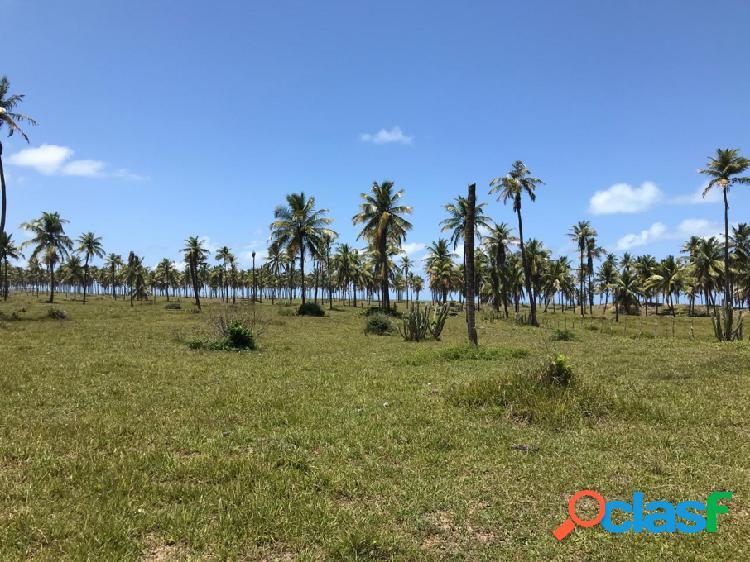 Terreno - Venda - Barra dos Coqueiros - SE - Centro