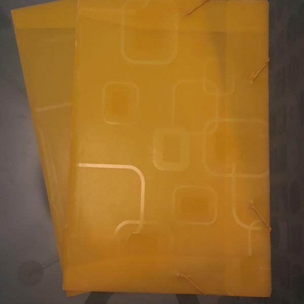 conjunto de 2 pastas plásticas para organização de