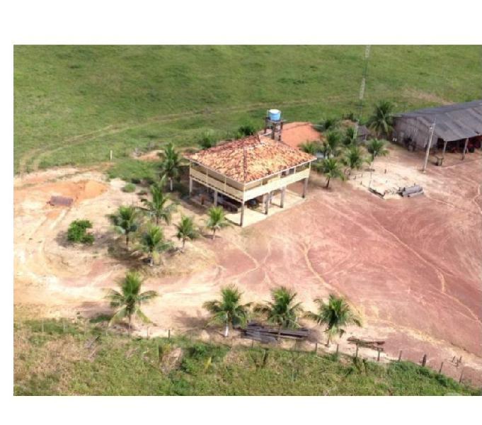 1.550 Alq. 22 Km De Rio 415 Abertos Muita Madeiras Estuda P.