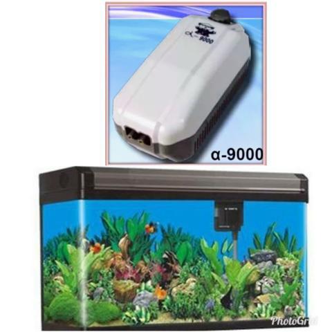 Bomba de aquário