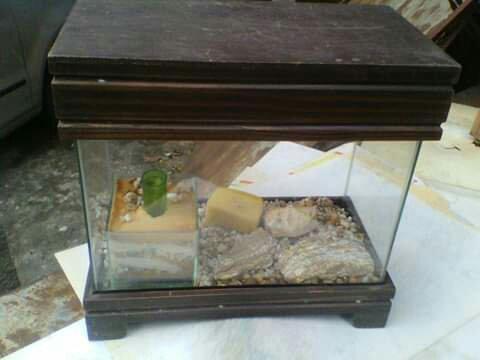 Aquário de mesa 35 x 25 cm