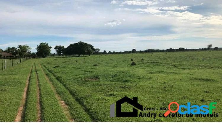 Vendo área de pecuária á 40 km de Barra do Bugres, área