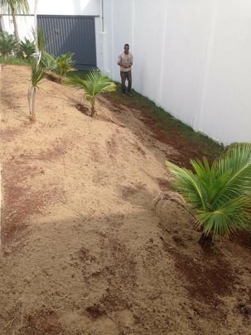 Podas, corte de árvores e jardinagem