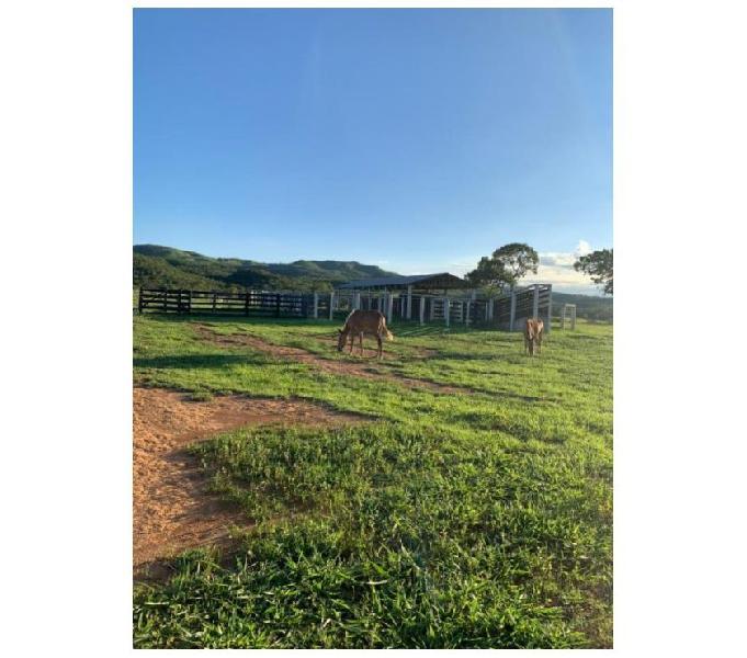 200 Alqs Planta 100 Rio Estuda Proposta Padre Bernado GO