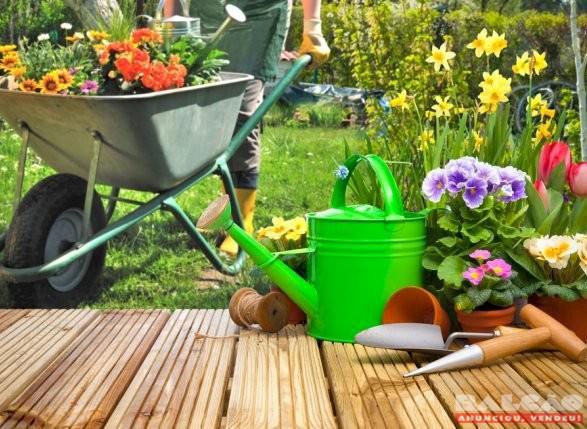 Manutenção em jardins, lotes, limpeza, capinação, poda,