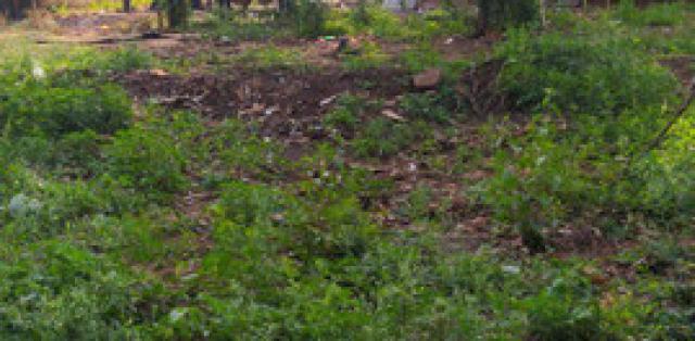 Vendo terreno na moreninha 3 valor 4 mil - MGF Imóveis