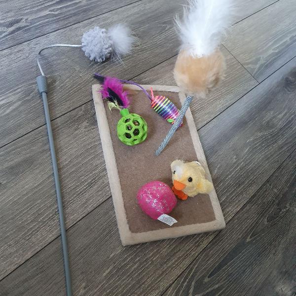 Kit de brinquedos para gato.